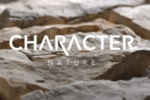 Character nature